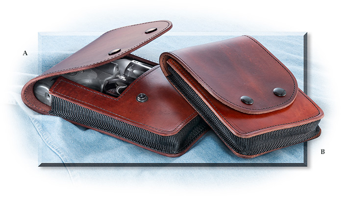 Unique Pistol Carry Case
