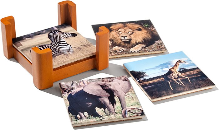 African Wildlife Coasters