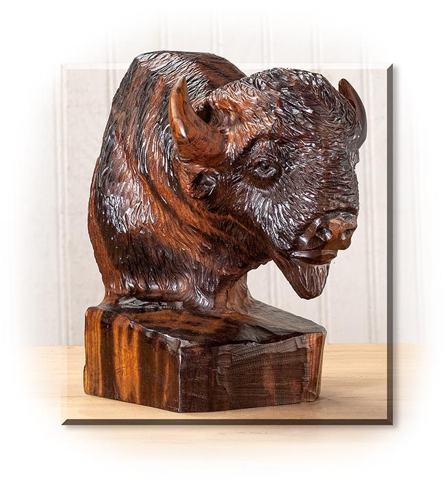 Bison Head in Desert Ironwood