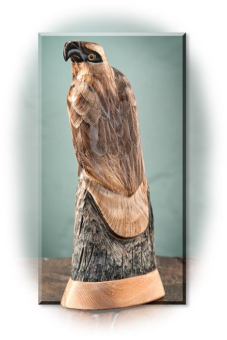 Hand Carved Eagle on Buffalo Horn