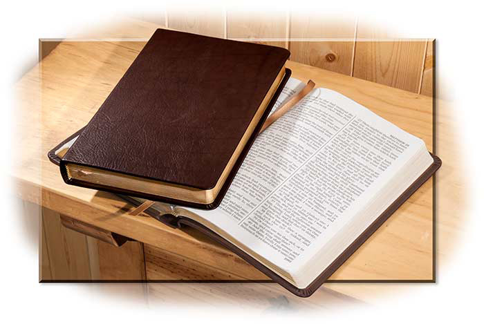 Bison Leather Bound King James Bible