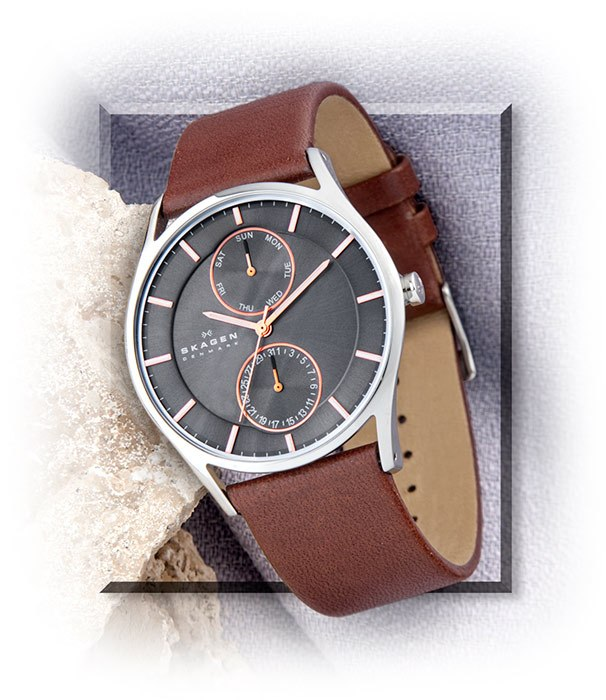 Skagen Multi-Function Watch