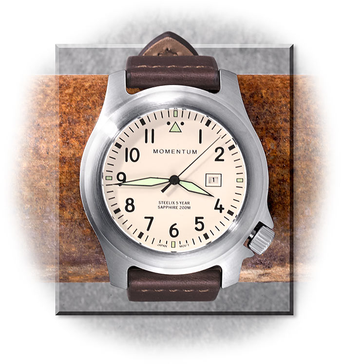Stainless Steel Watch with Leather Band