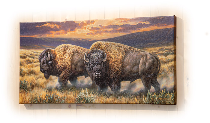 Dusty Plains Bison by Rosemary Milette - Print wall hanging