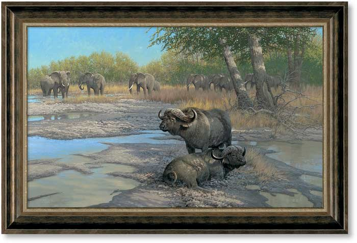 BEAUTY PARLOR - CAPE BUFFALO - UN FRAMED - LIMITED EDITION GICLEE ON CANVASS BY MICHAEL SIEVE - 24 X